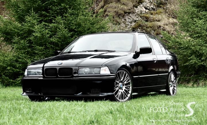 Black Beast